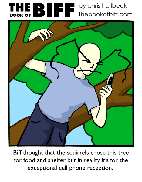 #201 – Squirrel